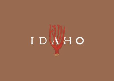 IDAHO · Levitate