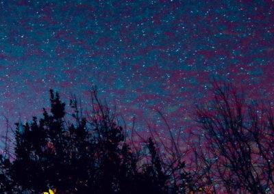 U.SINE · Blossoming Galaxies